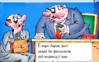 Шухиҳои Шоҳинбод ва шарафи соҳибкор Тулқунов