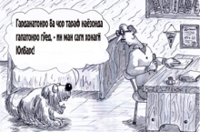 Наҷмиддини Шоҳинбод ва Вафодор