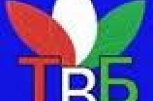 """С.Сиддиқов сабаби пахши наворҳои зӯроварӣ дар ТВ """"Баҳористон""""-ро шарҳ дод"""
